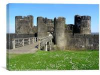 Medieval Castle                            , Canvas Print