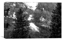 Snowy Sulphur Mountain Behind Trees, Canvas Print
