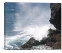 Escape from the sea, Canvas Print