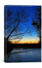 Silhouetted trees at sunset creek., Canvas Print