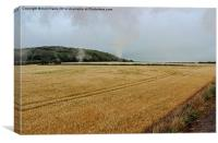 Countryside from a steam train, Canvas Print