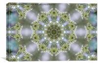 White Kaleidoscope Flower, Canvas Print