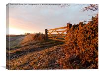 Frosty Cotswold, Canvas Print