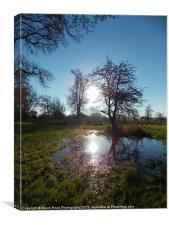 Wet Lands, Canvas Print
