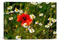 Flower Meadow, Canvas Print