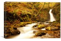 Autumn Waterfall, Canvas Print