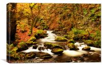 Nant Dol-goch in Autumn, Canvas Print
