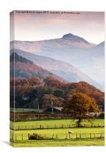 Cadair Idris, Canvas Print