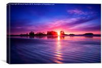 Frank Island sunset, Vancouver Island, Canvas Print