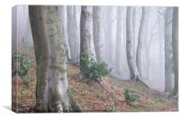 Misty Wood, Canvas Print