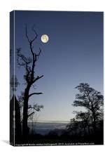Autumn Moon, Canvas Print