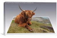 Cow on Canvas, Canvas Print