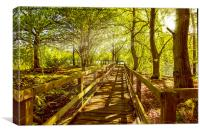Landscape Summer Boardwalk, Canvas Print