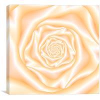 Pale Peach Spiral Rose, Canvas Print