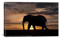 Elephant Silhouette, Canvas Print