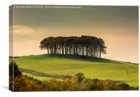 Cornish Homecoming, Canvas Print