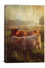 Highlanders. Scottish Countryside, Canvas Print