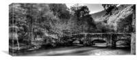 Fingle Bridge in the Autumn, Canvas Print