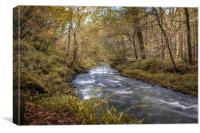 River Lyd in Autumn, Canvas Print