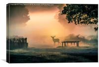 Deers In The Mist, Canvas Print