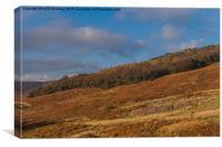 Vibrant Colour at Stanage Edge in Debyshire, Canvas Print