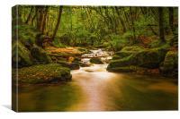 Golitha Falls. , Canvas Print