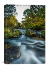 Badgers Holt at Dartmeet on Dartmoor., Canvas Print