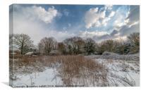 Snow over Thorpe Le Soken, Canvas Print
