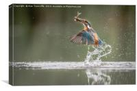 A great catch for us both !!!, Canvas Print