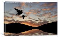 Geese at Dusk, Canvas Print