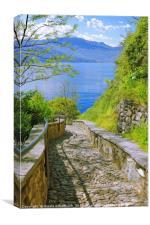 Way to the Lake, Canvas Print