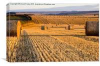 Straw Bales at Dawn, Canvas Print