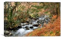 """Autumn Stream"", Canvas Print"