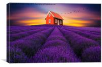 Beauty of nature, Canvas Print