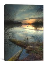 Earlswood Lakes - Warwickshire., Canvas Print