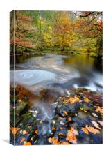 Brecon Beacons Waterfall in Autumn, Canvas Print