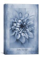 Cyanotype Dahlia, Canvas Print