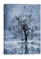 The Wishing Tree Cyanotype, Canvas Print