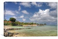 Coco Reef, Tobago, Canvas Print