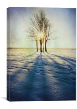 Winter Sun, Canvas Print