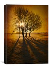 Winter Morning, Canvas Print