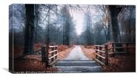 Forest Path, Canvas Print