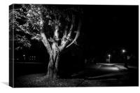 Rural street live at night, Canvas Print