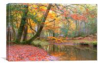 New Forest Autumn, Canvas Print