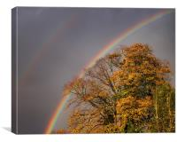 Autumn Rainbow, Canvas Print