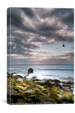 Stormy Beach, Canvas Print