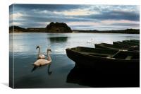 Swans on a Lake, Canvas Print