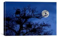 Heronry at Full Moon, Canvas Print