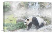 Giant Panda and Waterfall in the Mist, Canvas Print