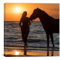 Horse on the Beach, Canvas Print
